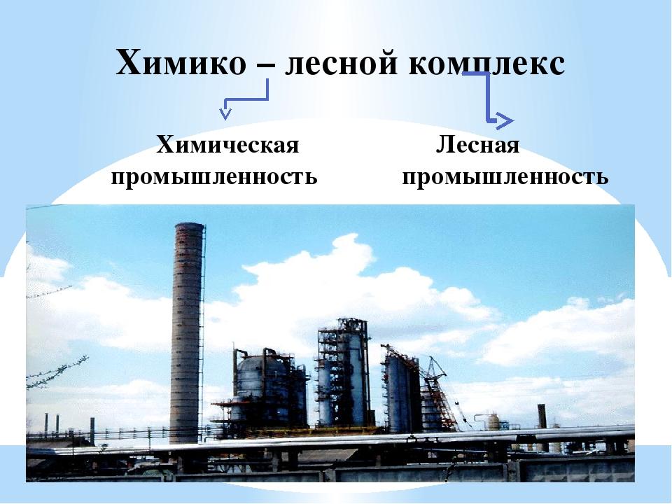 Картинка химико лесная промышленность
