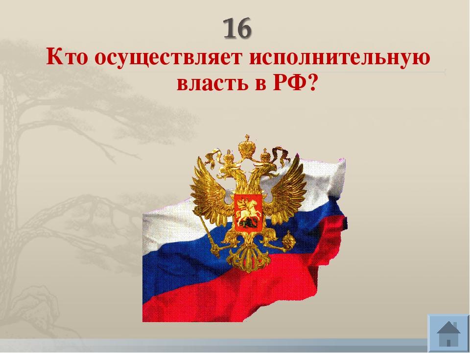 Кто осуществляет исполнительную власть в РФ?