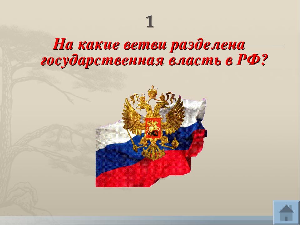 На какие ветви разделена государственная власть в РФ?