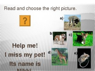 Read and choose the right picture. Help me! I miss my pet! Its name is Nikki.