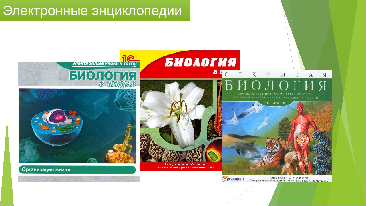 электронные учебники и энциклопедии картинки