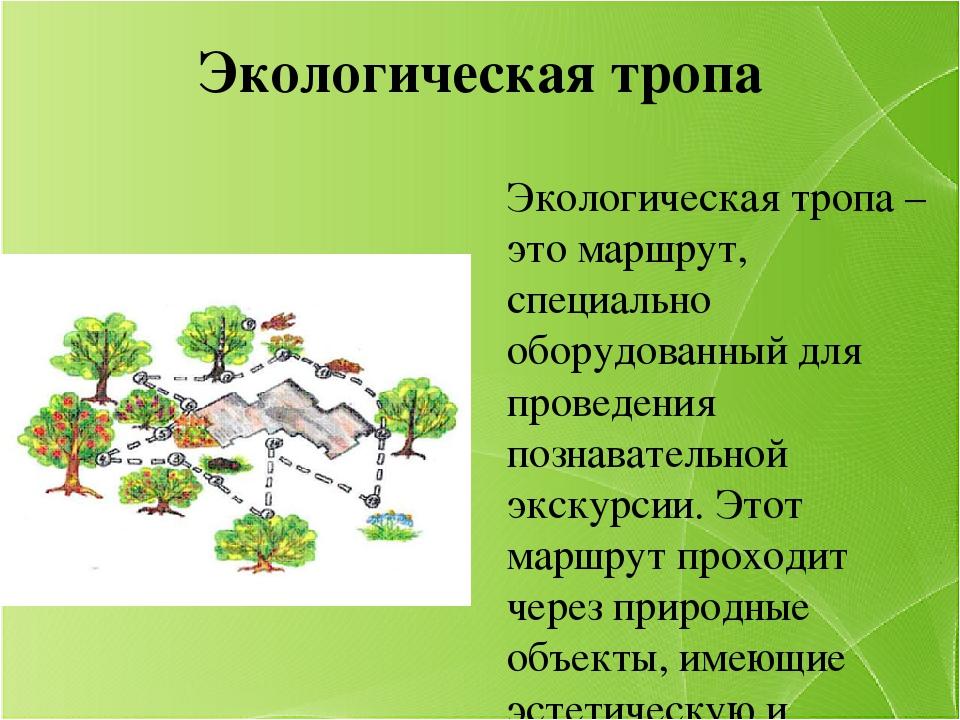 Экологическая тропа Экологическая тропа – это маршрут, специально оборудованн...