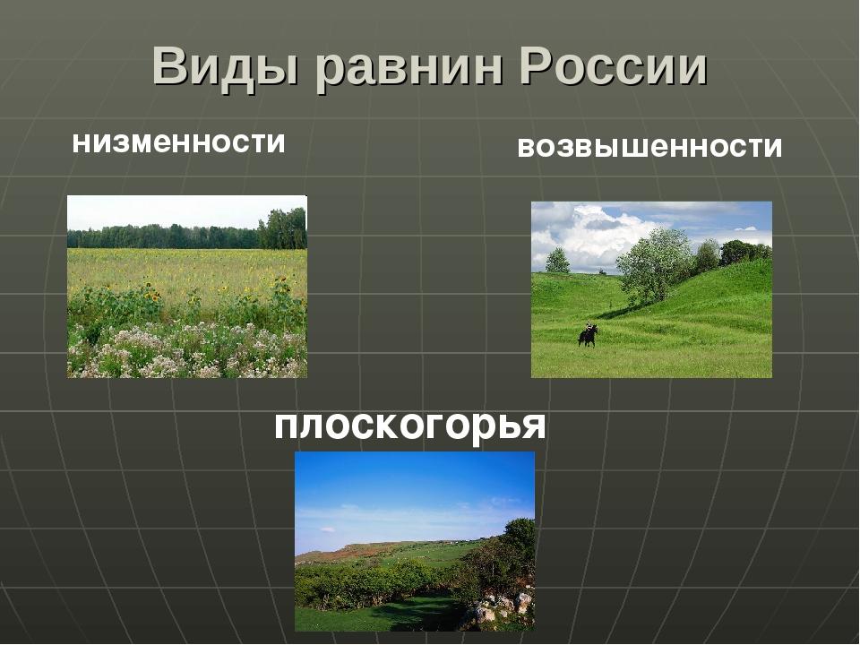 Виды равнин России низменности возвышенности плоскогорья