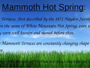 Mammoth Hot Spring: The Terraces, first described by the 1871 Hayden Survey,