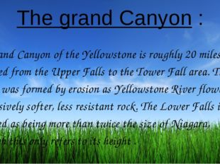 The grand Canyon : The Grand Canyon of the Yellowstone is roughly 20 miles lo
