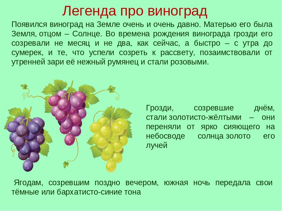 3 сентября день винограда стихи пользы