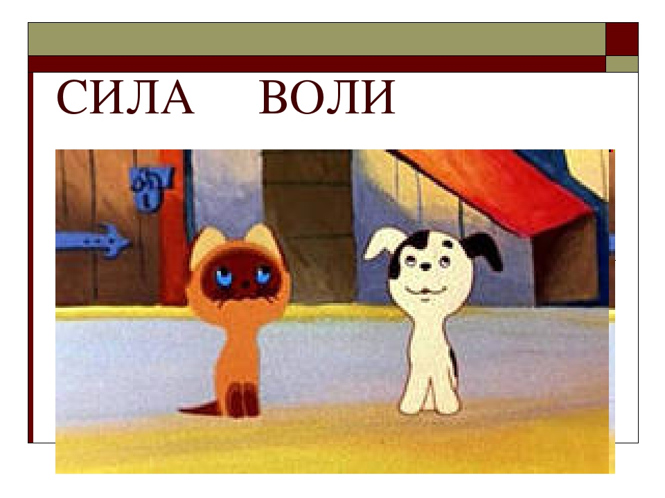 СИЛА ВОЛИ