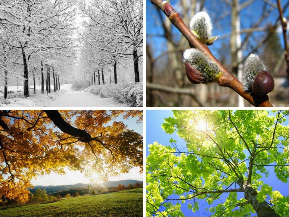 Природа в его стихах одушевлена, ее состояние тождественно состоянию души че...