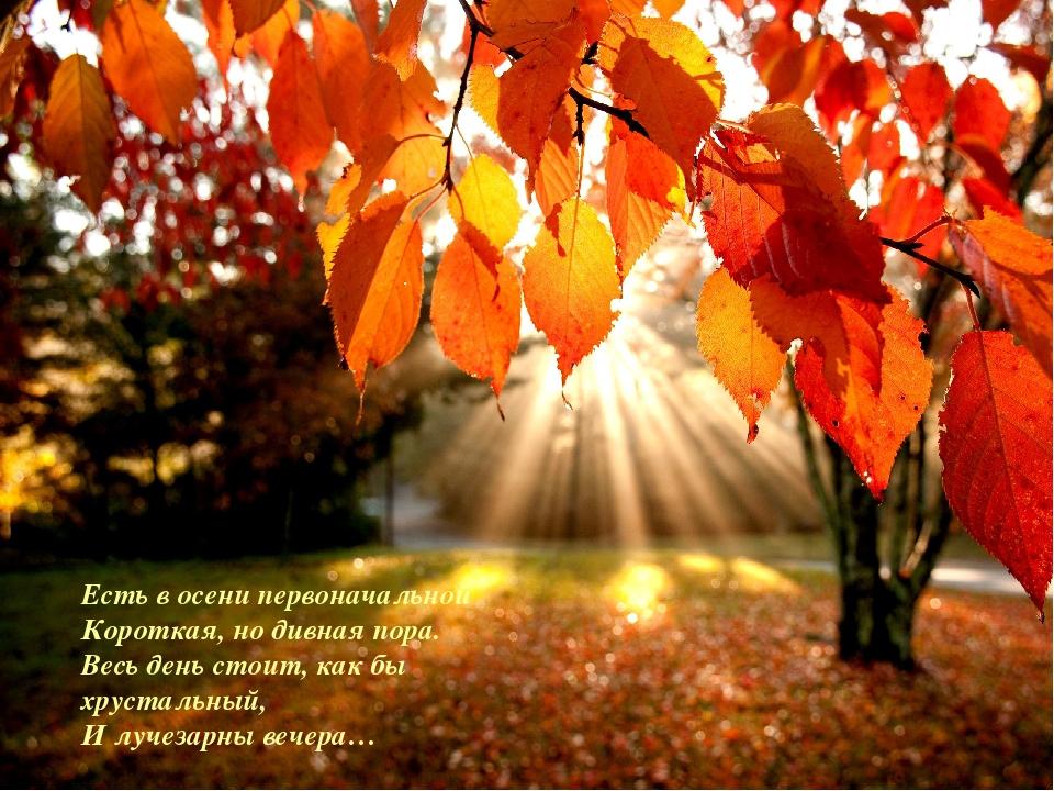 Осень Есть в осени первоначальной Короткая, но дивная пора. Весь день стоит,...