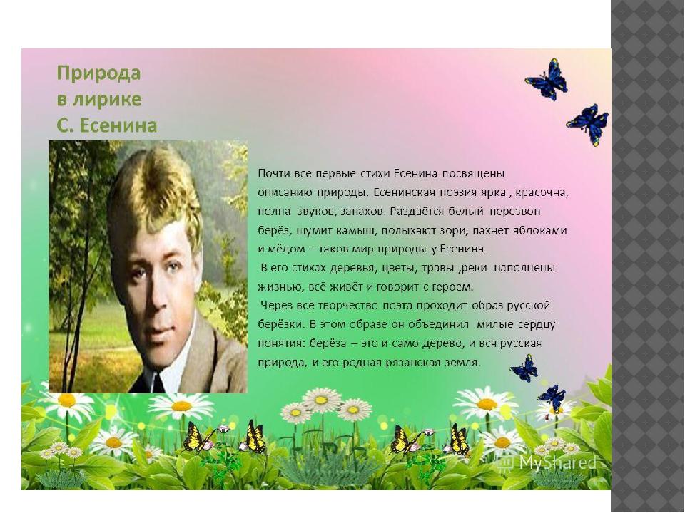проза о природе сочи Калининград, сей день