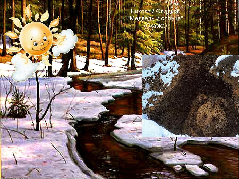 Открытка днем, медведь и солнце картинки к сказке