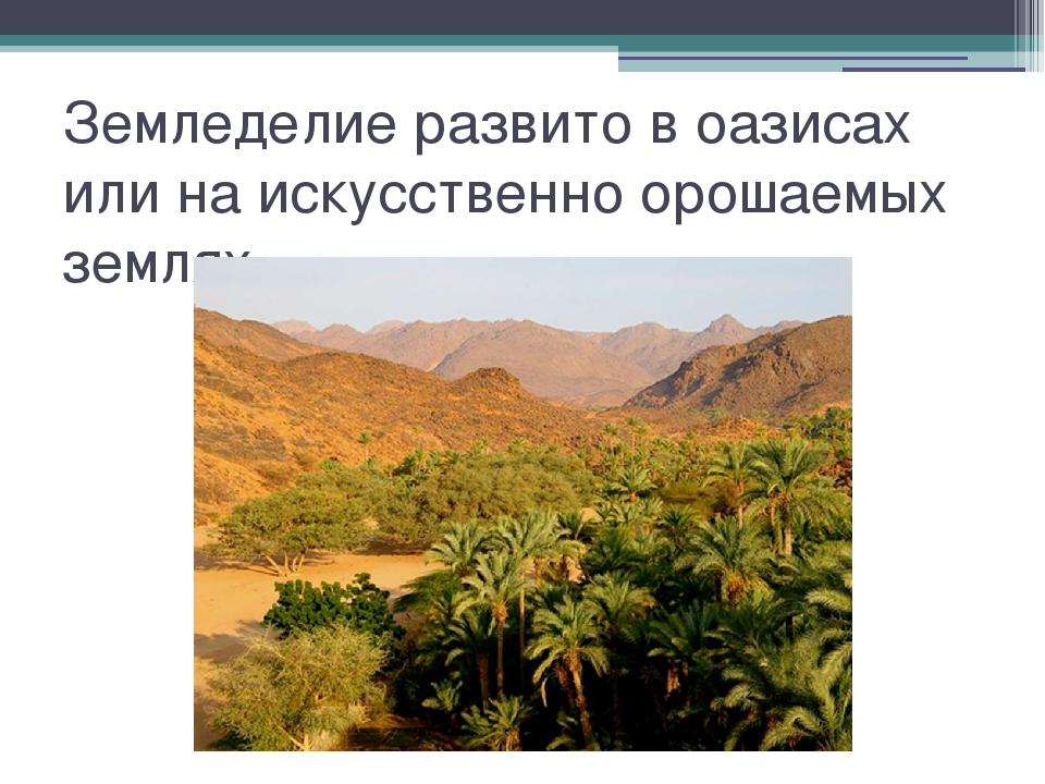 Земледелие развито в оазисах или на искусственно орошаемых землях