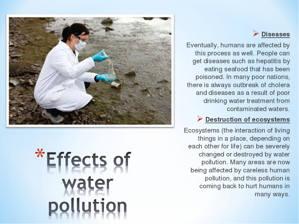 effect of water pollution essay Free essay: the negative effect of pesticides on the environment america the beautiful so why are we destroying it everyday with the use of pesticides it.