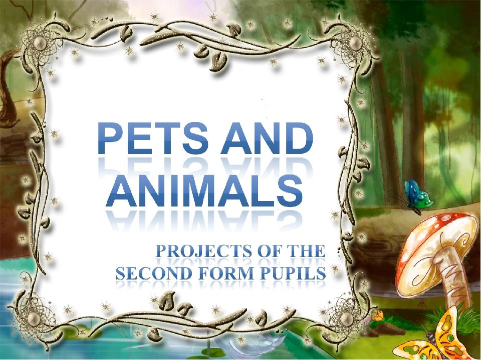 реферат на тему домашние животные 2 класс