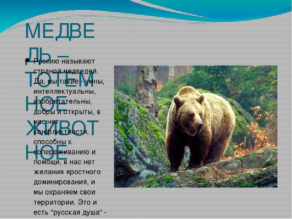 многие медведь как символ картинки талантов шанс будет