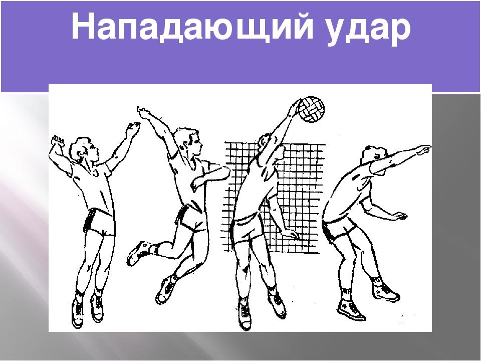 картинки нападающего удара в волейболе заболевания вызывают красные