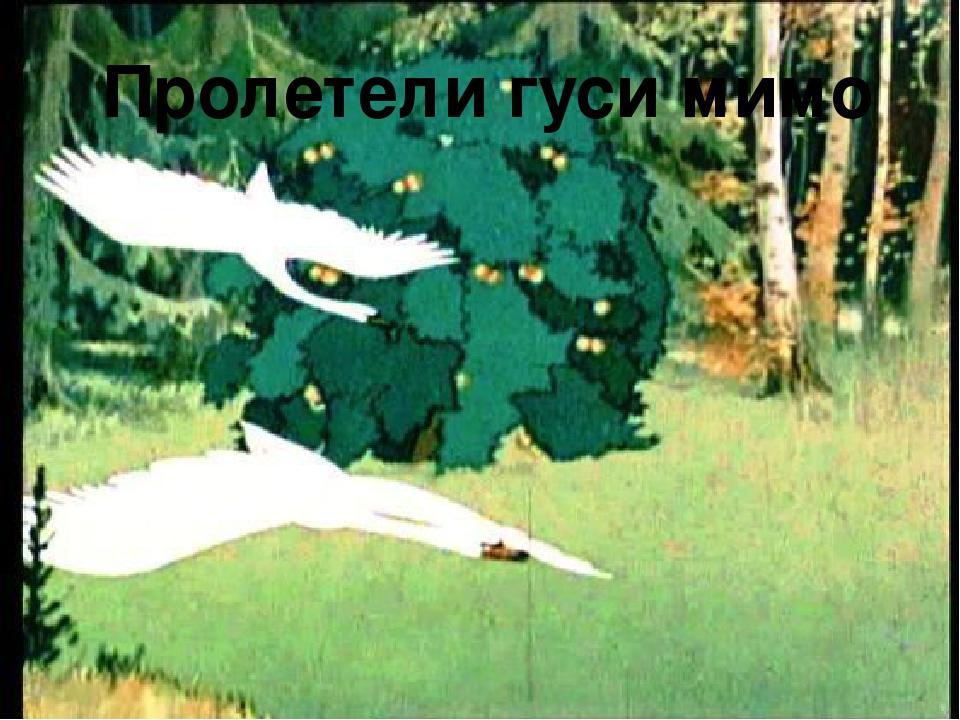 Пролетели гуси мимо