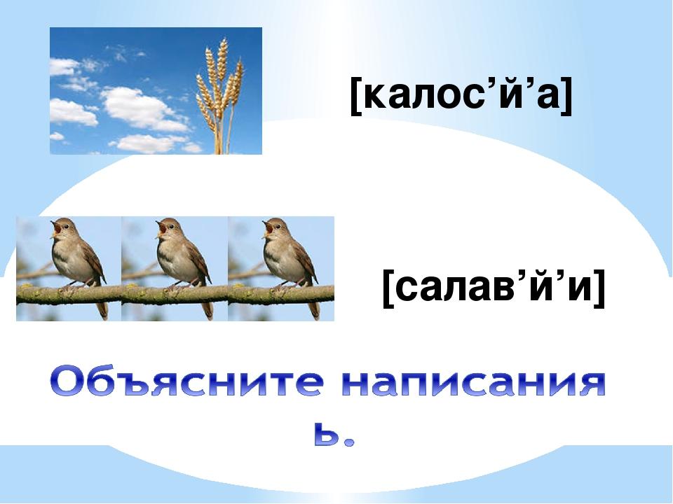 [калос'й'а] [салав'й'и]