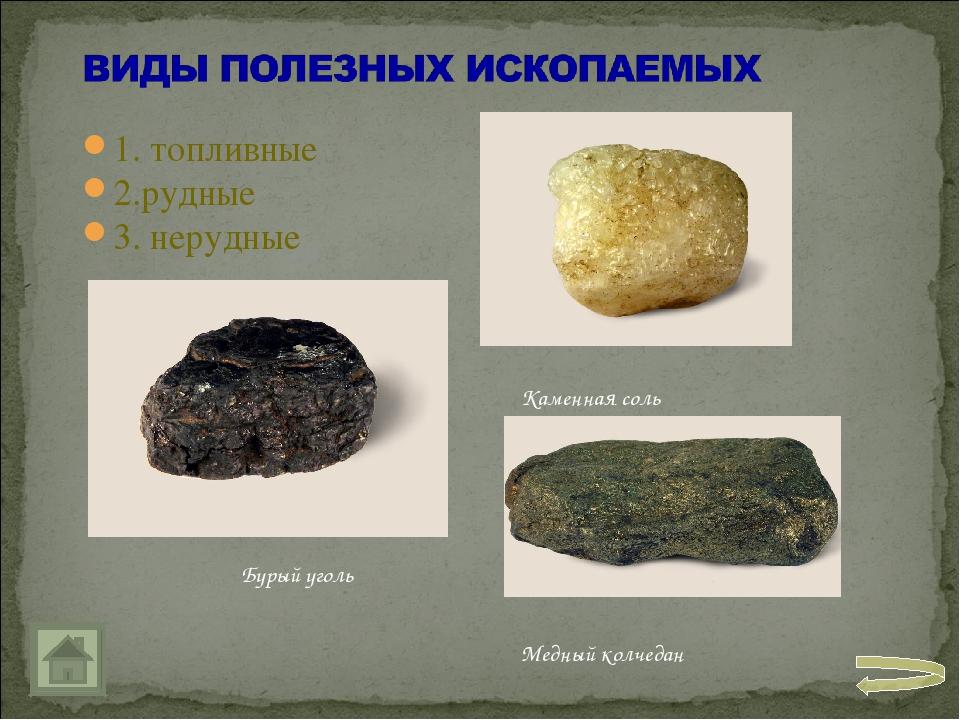 1. топливные 2.рудные 3. нерудные Бурый уголь Каменная соль Медный колчедан