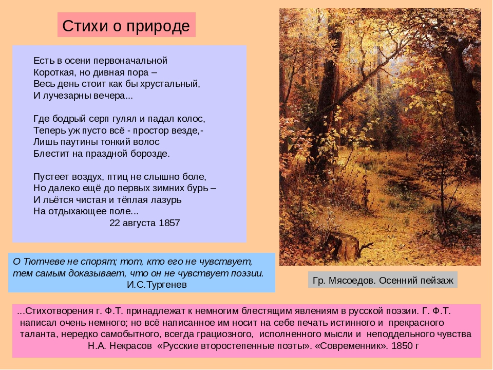стихи на тему природа тютчев вкусная грибная