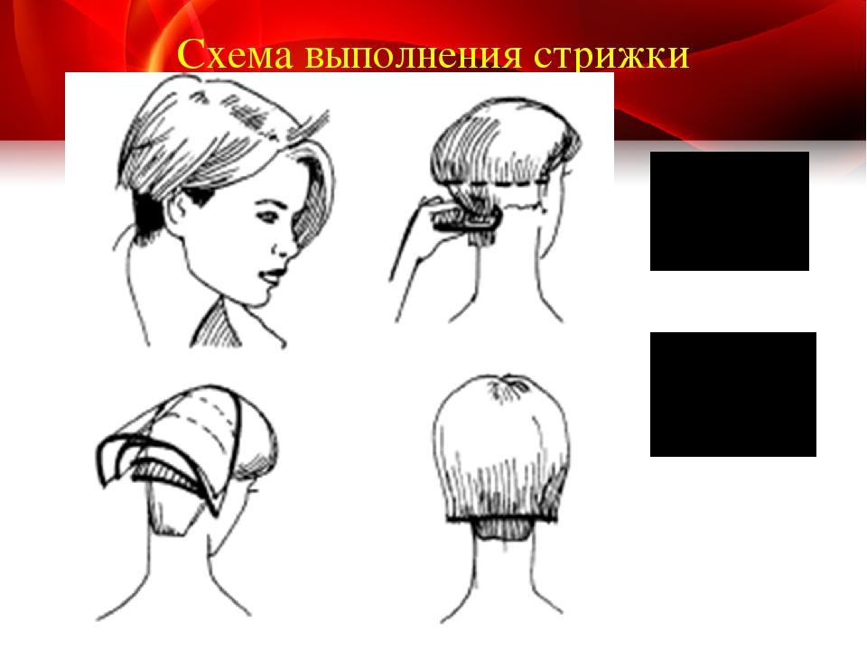техника выполнения стрижек в картинках территории