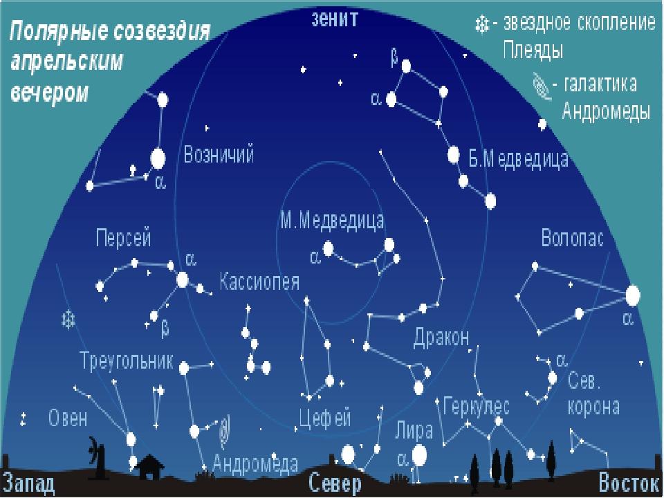 все созвездия фото и названия солнечной системы зверобоя пятнистого лучше