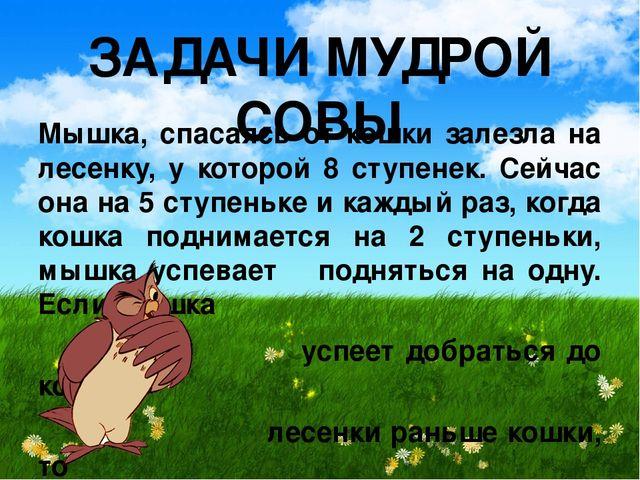 ЗАДАЧИ МУДРОЙ СОВЫ Мышка, спасаясь от кошки залезла на лесенку, у которой 8 с...