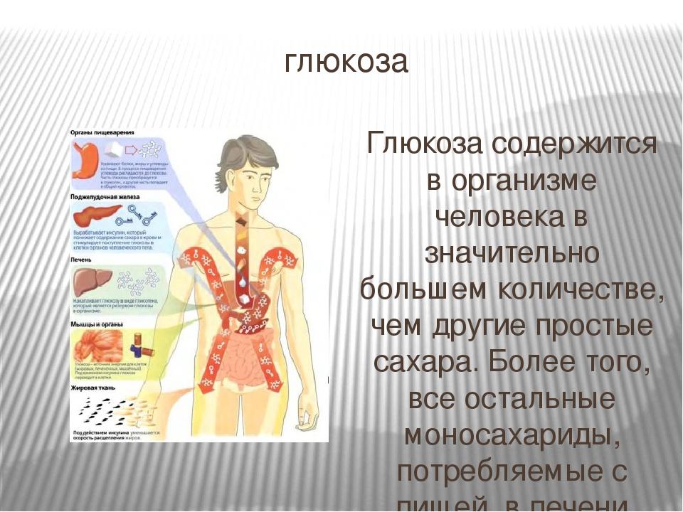Влияние глюкозы на организм человека