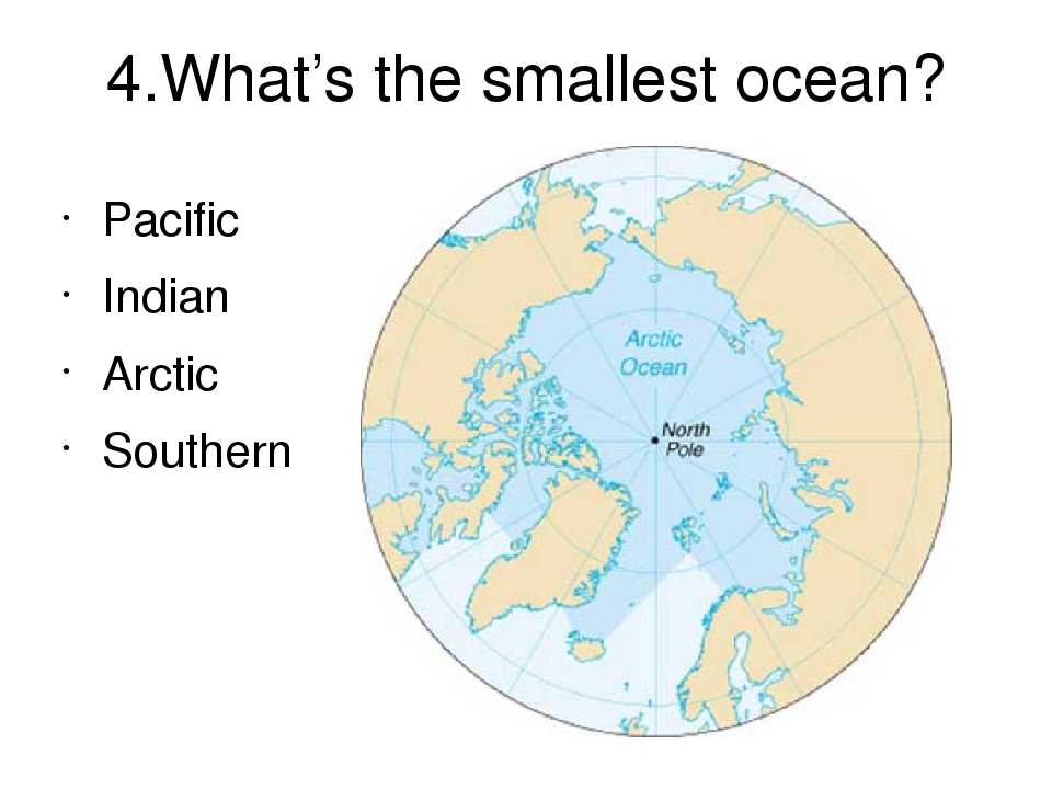 the smallest ocean - 960×720