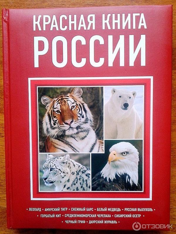 Книги про россию скачать