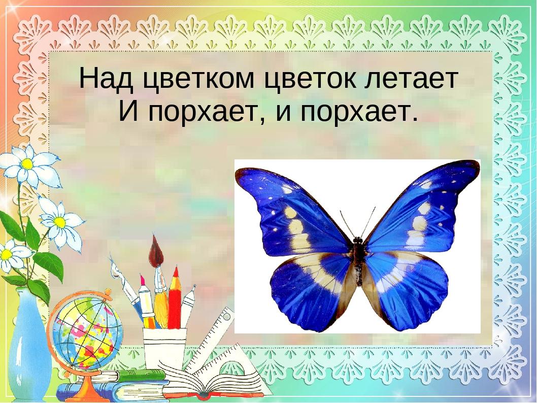 Над цветком цветок летает Ипорхает, ипорхает.