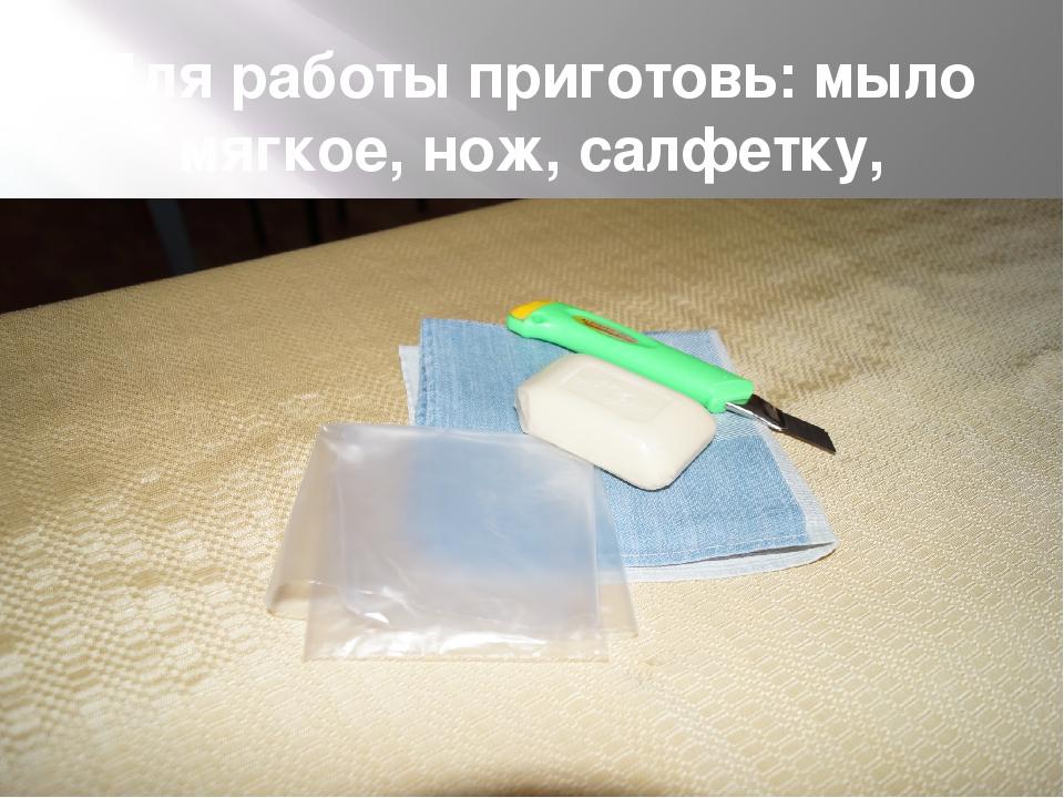 Для работы приготовь: мыло мягкое, нож, салфетку, пакетик для отходов