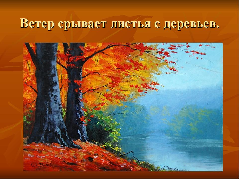 Ветер срывает листья с деревьев.