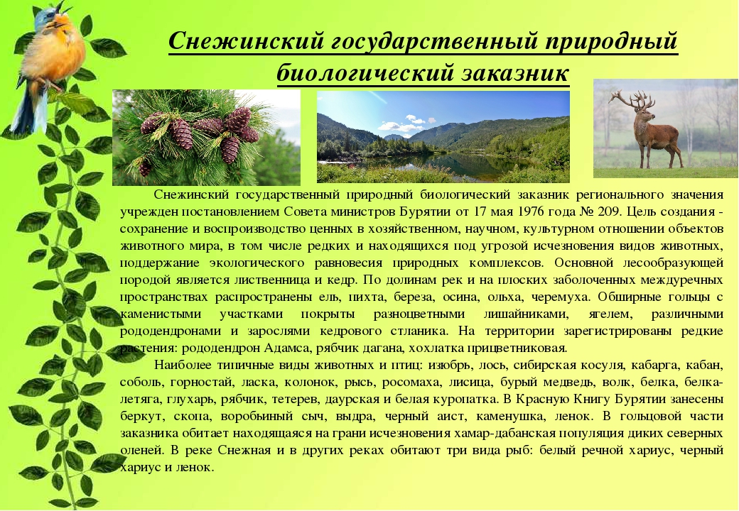 сколько заповедников в иркутской области фото можно