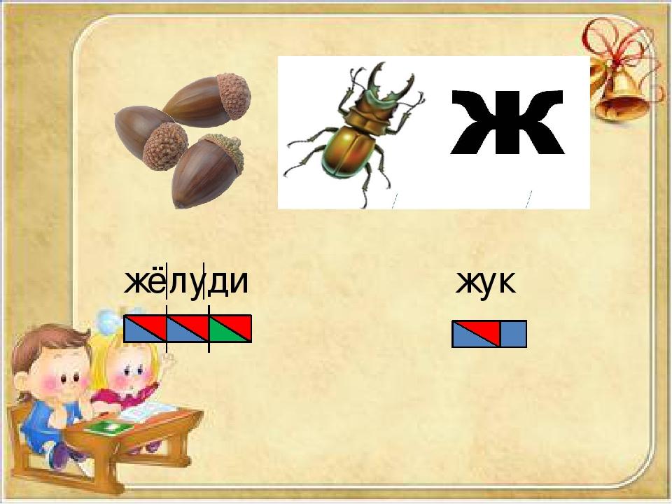 жёлуди жук