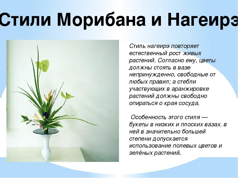 Стили Морибана и Нагеирэ Стиль нагеирэ повторяет естественный рост живых раст...