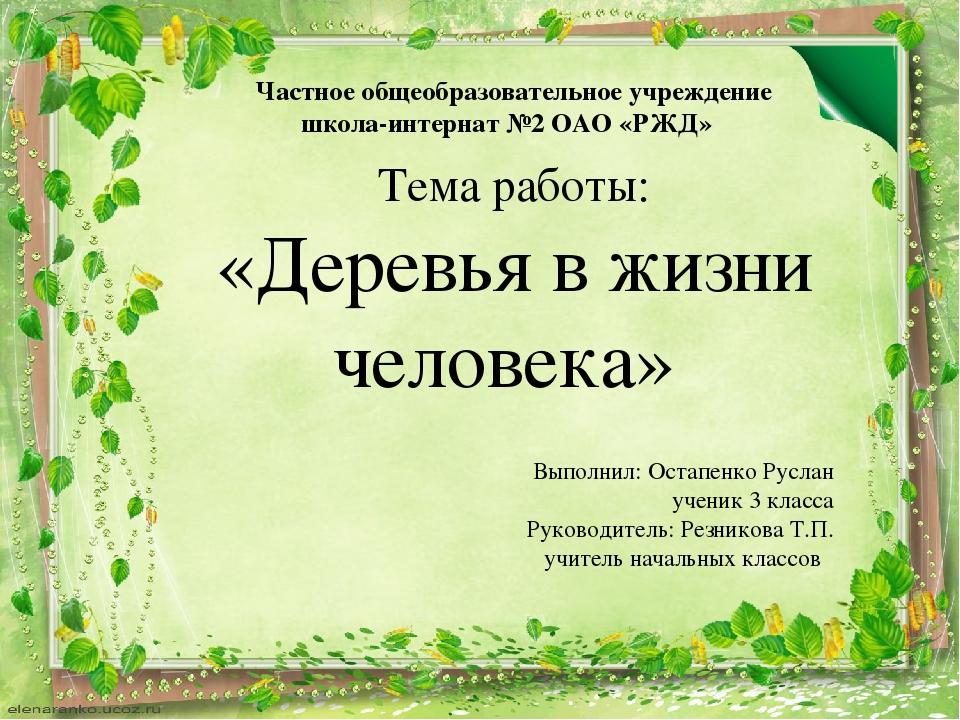 Тема работы: «Деревья в жизни человека» Выполнил: Остапенко Руслан ученик 3 к...