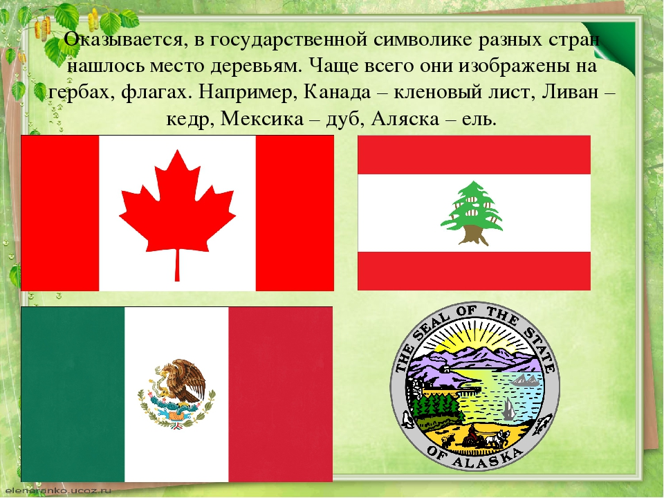 Оказывается, в государственной символике разных стран нашлось место деревьям....