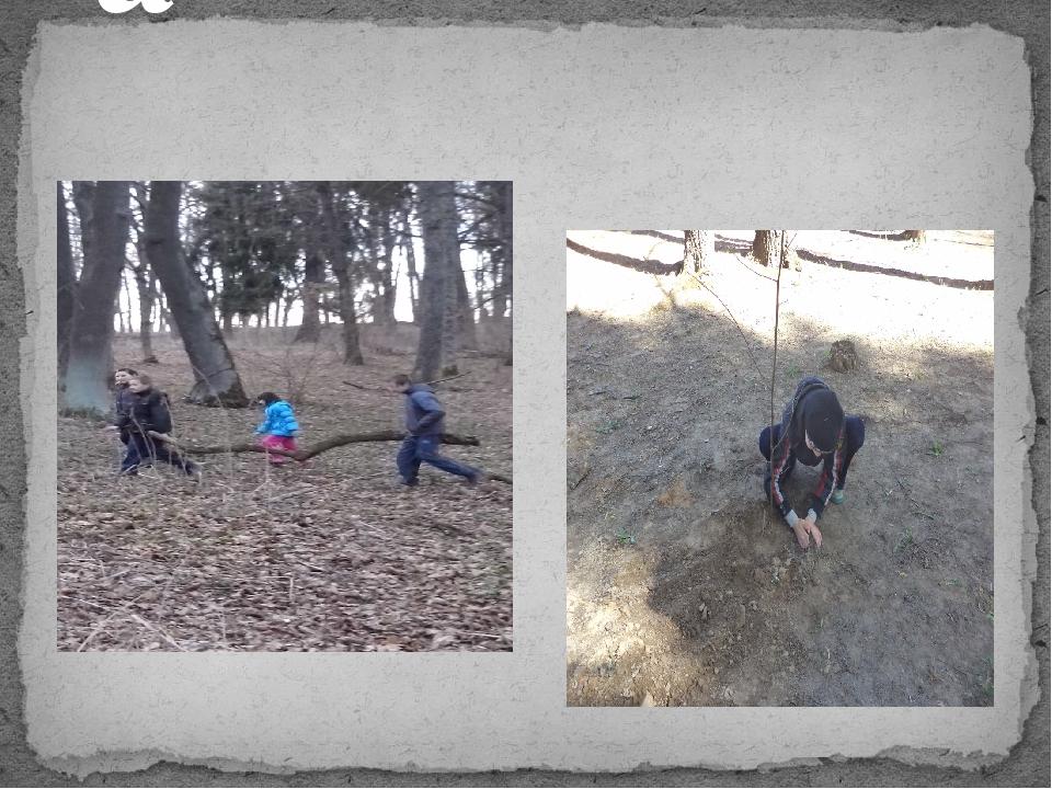 Посадка молодых лип Трудовой десант по очистке парка