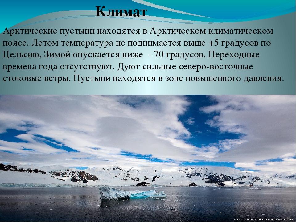 арктические пустыни картинки с описанием достаточно популярная