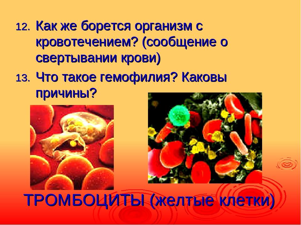 ТРОМБОЦИТЫ (желтые клетки) Как же борется организм с кровотечением? (сообщени...