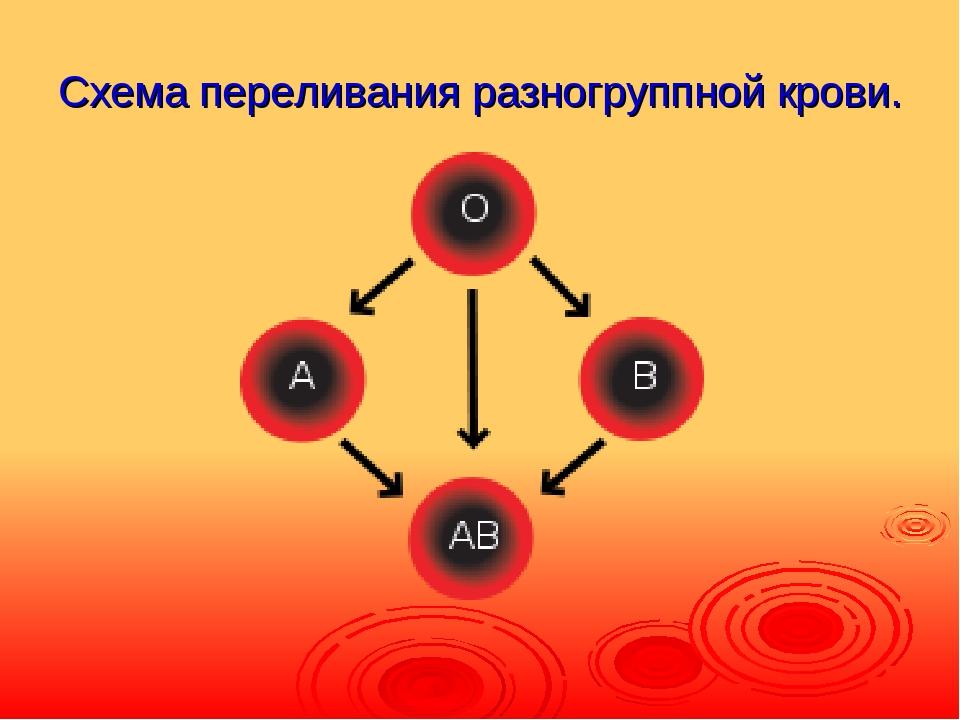 Схема переливания разногруппной крови.
