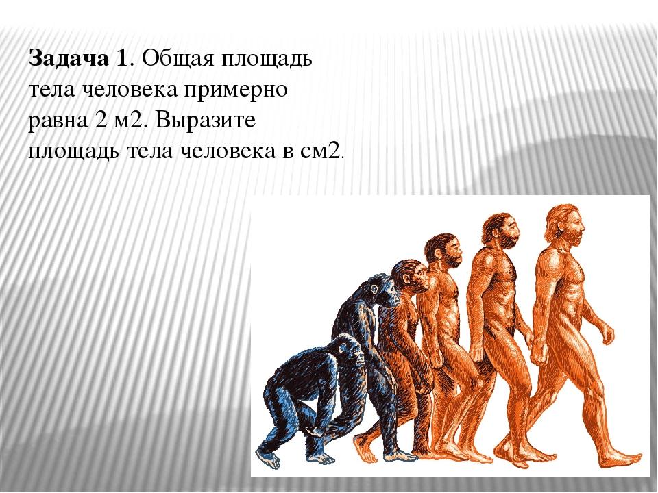 Задача 1. Общая площадь тела человека примерно равна 2 м2. Выразите площадь т...