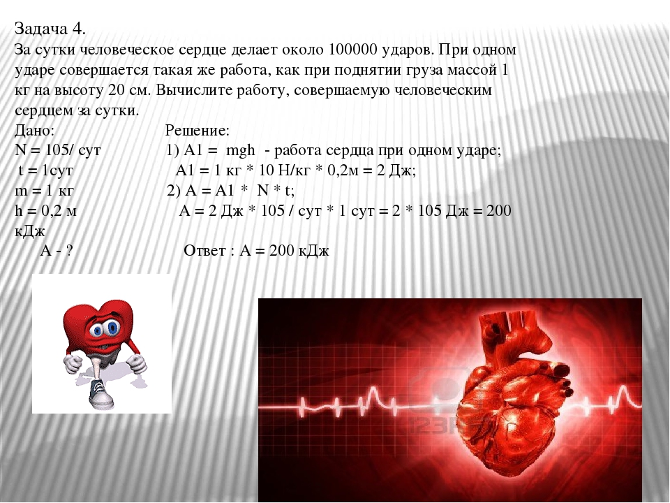 Задача 4. За сутки человеческое сердце делает около 100000 ударов. При одном...