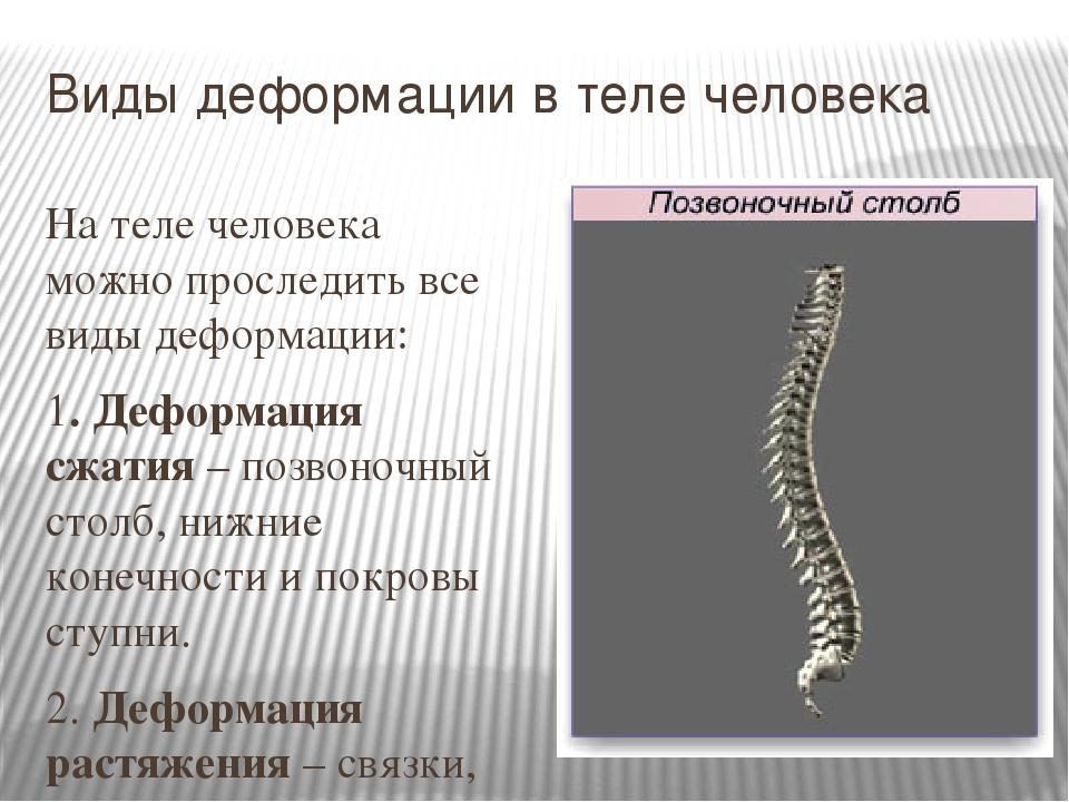 Виды деформации в теле человека На теле человека можно проследить все виды де...