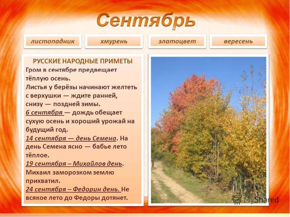 https://ds04.infourok.ru/uploads/ex/0174/0003705b-6a9dc0dd/img21.jpg