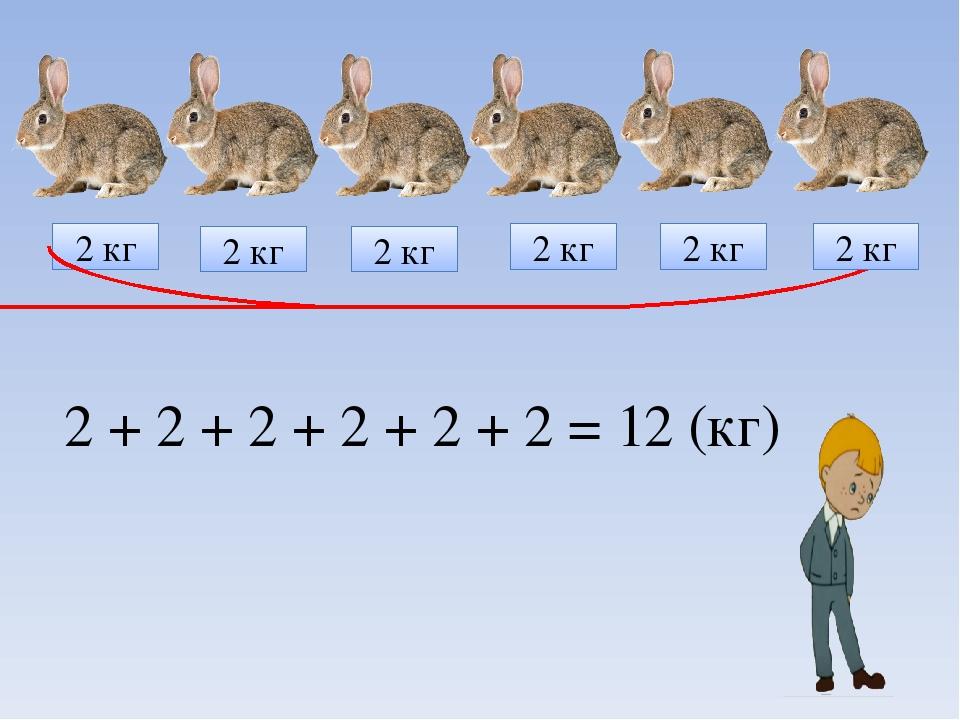 2 + 2 + 2 + 2 + 2 + 2 = 12 (кг) 2 кг 2 кг 2 кг 2 кг 2 кг 2 кг