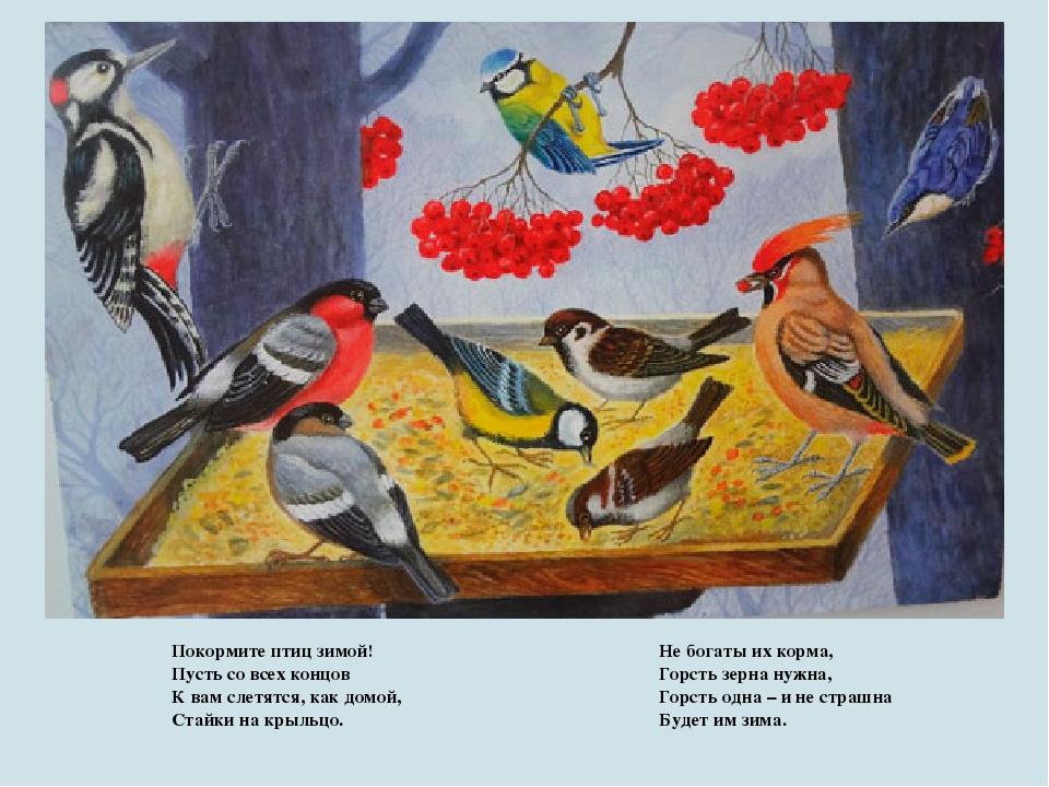 Птицы наши друзья открытое занятие в доу