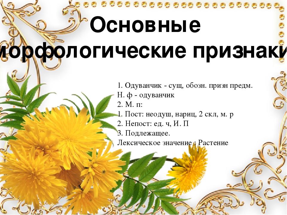 Основные морфологические признаки. 1. Одуванчик - сущ, обозн. призн предм. Н....