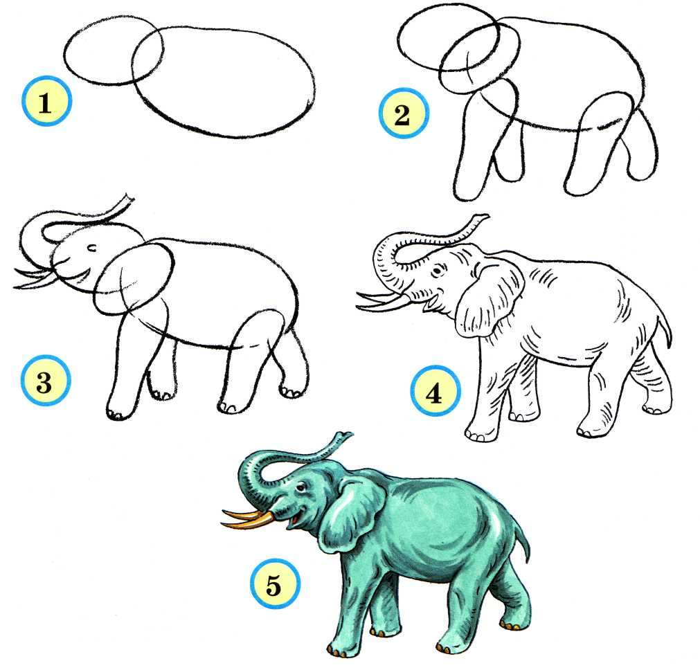 Как рисовать животных в видео